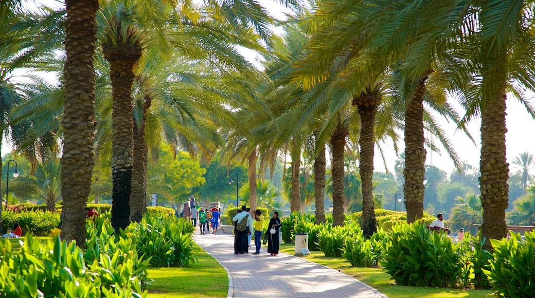 Safa Park showing a garden