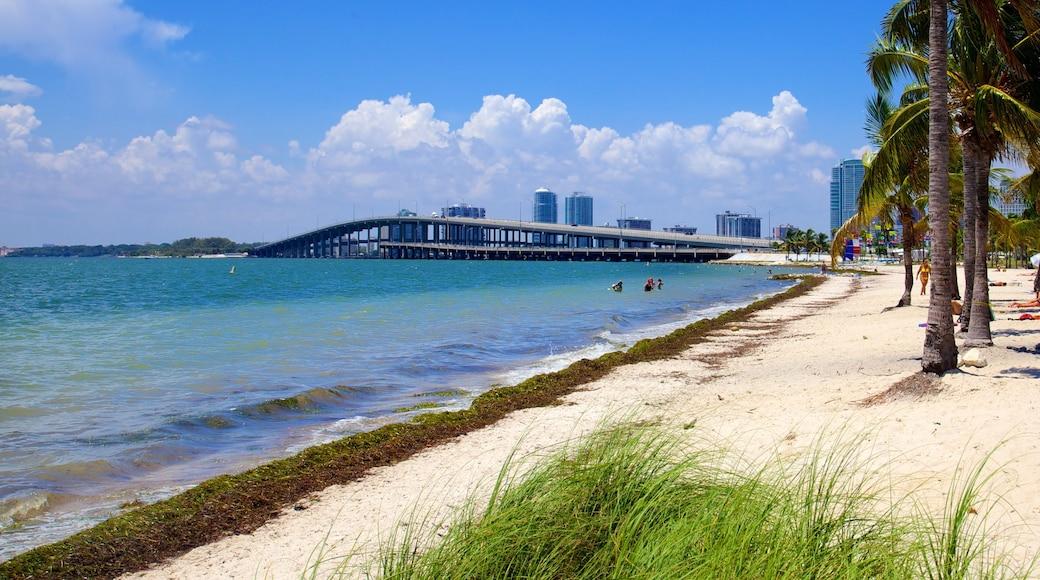 Key Biscayne inclusief een brug, een strand en tropische uitzichten