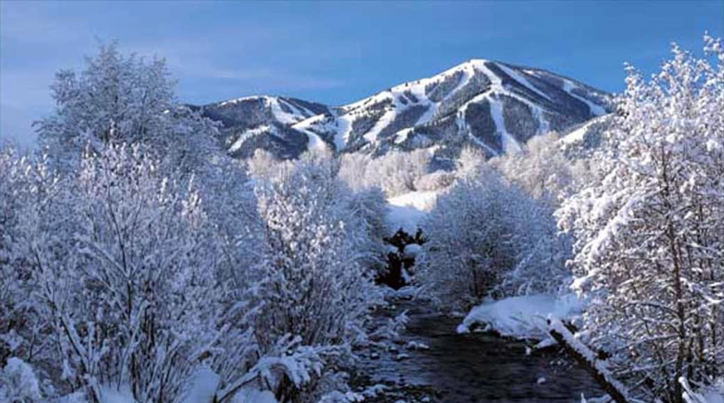 太陽谷 其中包括 下雪 和 山