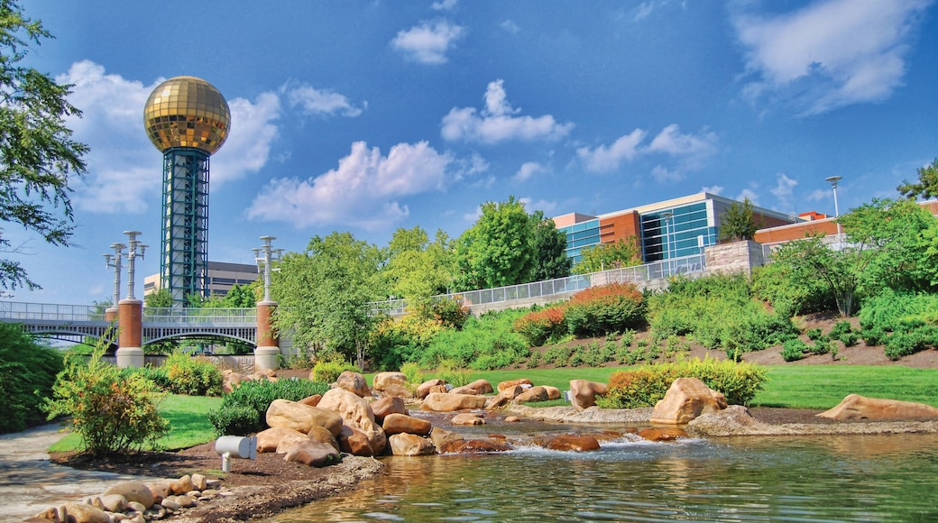 Knoxville showing a garden, modern architecture and a pond