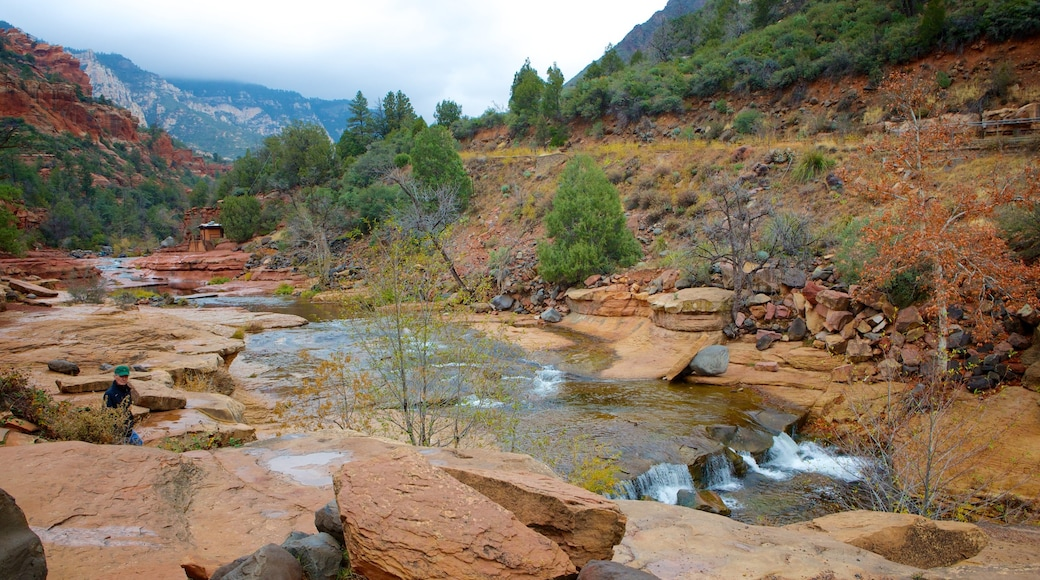 Slide Rock State Park which includes a river or creek and tranquil scenes