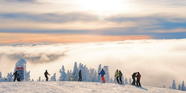 Mont-Tremblant Ski Resort featuring landscape views, snow skiing and snow