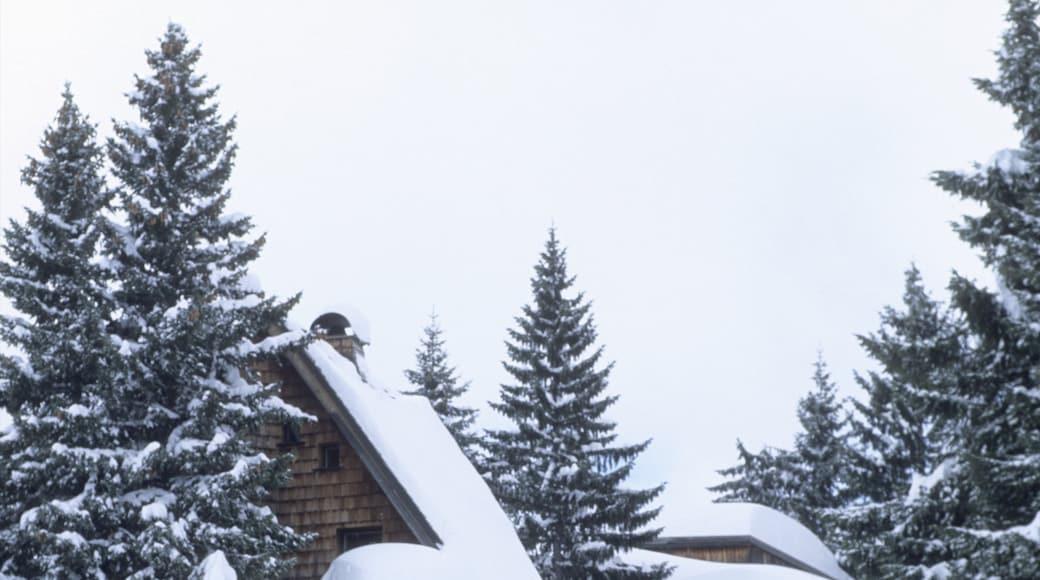 Station de ski Avoriaz mettant en vedette neige