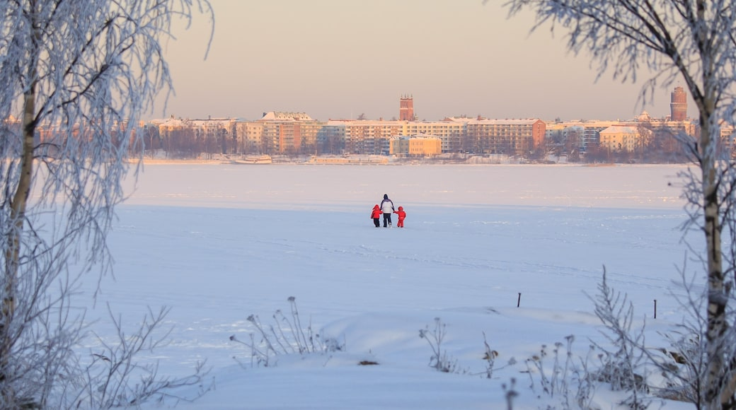 Vaasa which includes snow and a city