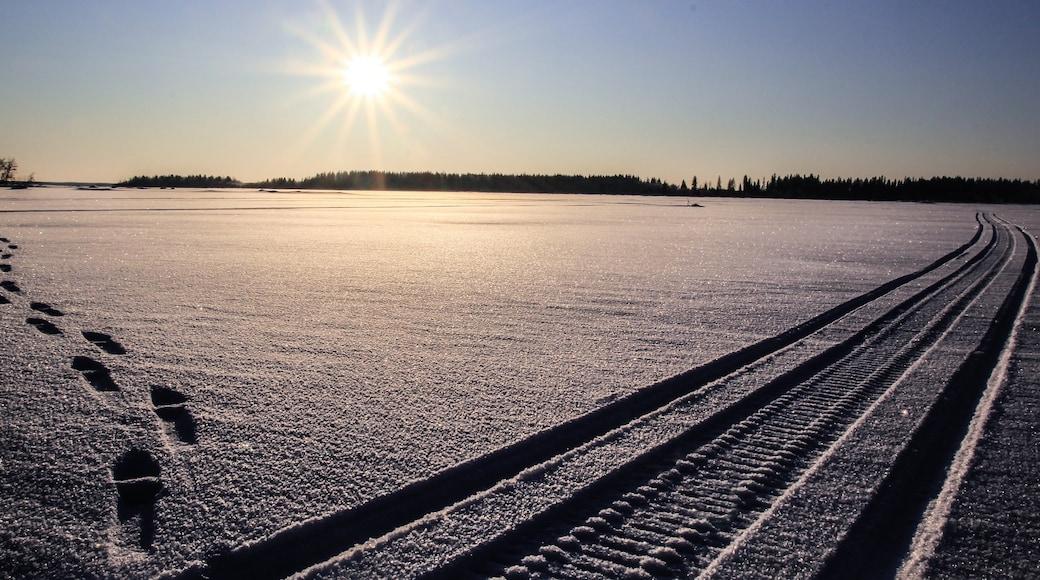 Vaasa showing snow and landscape views