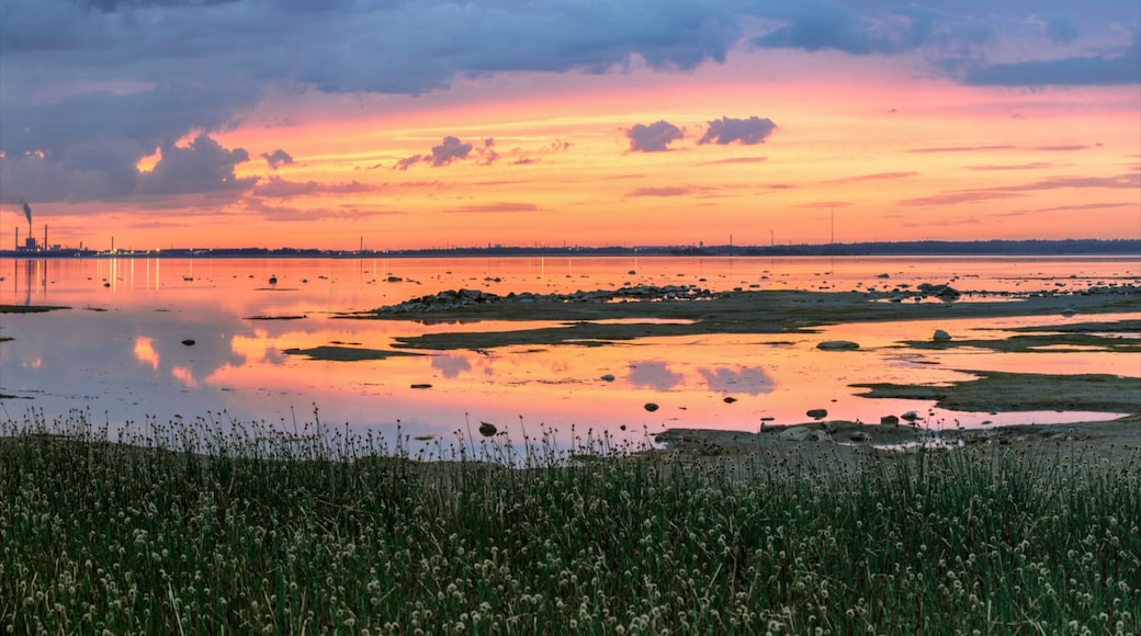 Oulu presenterar träsk, landskap och en solnedgång