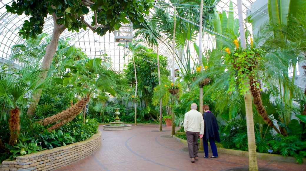 Franklin Park Conservatory and Botanical Gardens featuring a park and interior views as well as a couple
