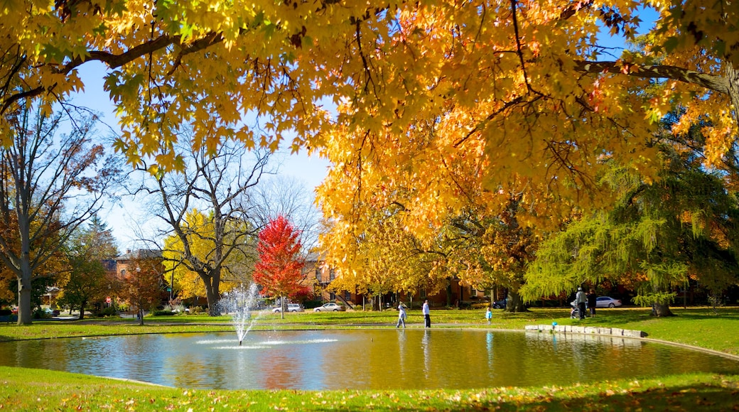 Schiller Park showing a garden, autumn colours and a fountain
