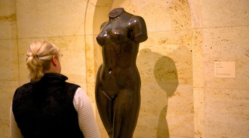 Columbus Museum of Art mostrando arte e vistas internas assim como uma mulher sozinha