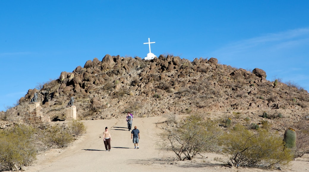Mission San Xavier del Bac showing hiking or walking, desert views and religious aspects