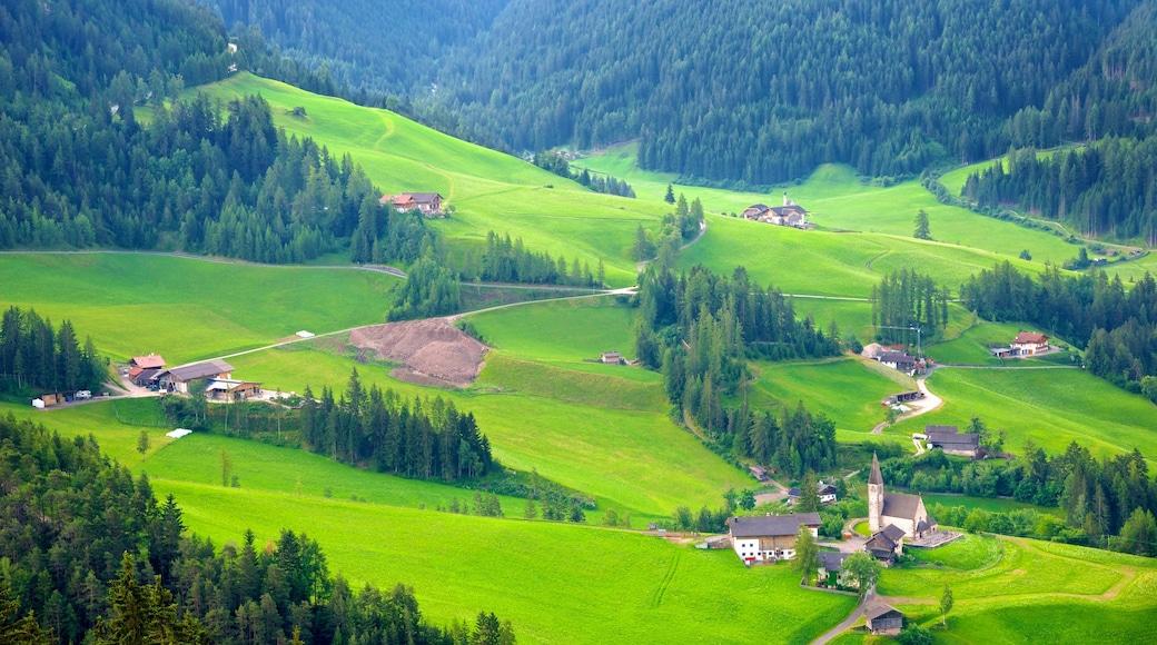 Villnöß das einen Farmland, Landschaften und Kleinstadt oder Dorf