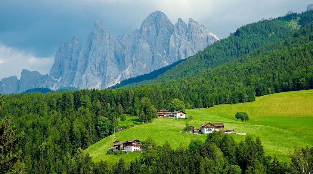 Villnöß welches beinhaltet ruhige Szenerie, Berge und Farmland