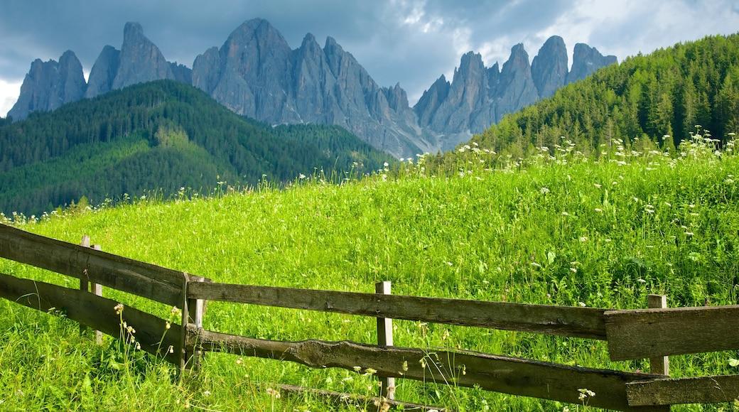 Villnöß mit einem Berge, ruhige Szenerie und Landschaften