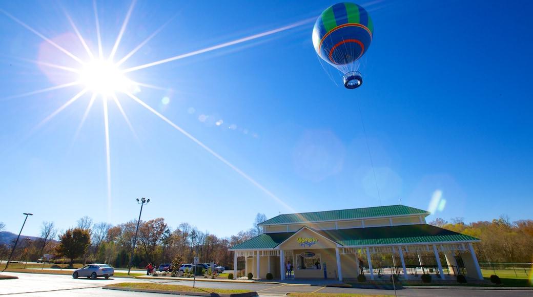 WonderWorks showing ballooning