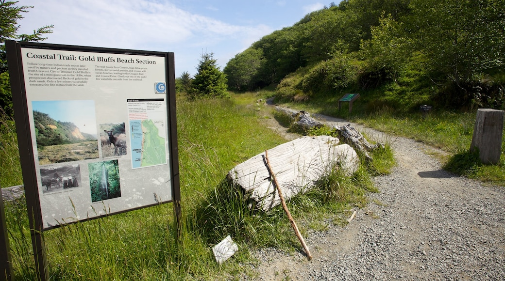 Redwood National and State Parks showing tranquil scenes and signage