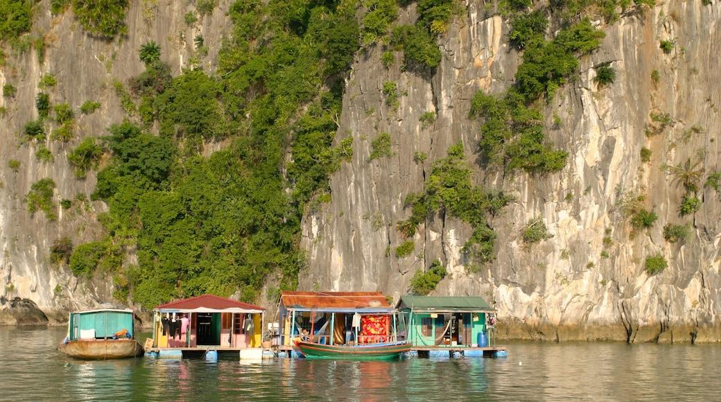 Baie d\'Halong montrant baie ou port et gorge ou canyon