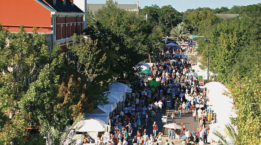 Gainesville featuring street scenes, markets and a festival