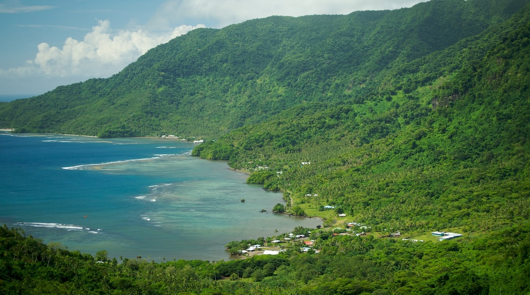 Upolu showing a bay or harbour, forest scenes and general coastal views