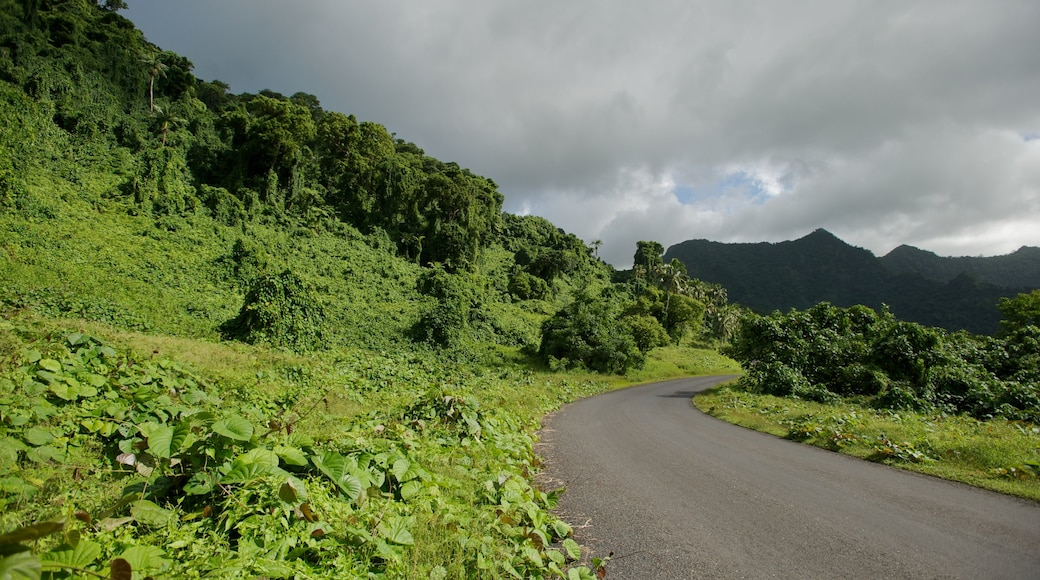 Upolu which includes forest scenes and tranquil scenes