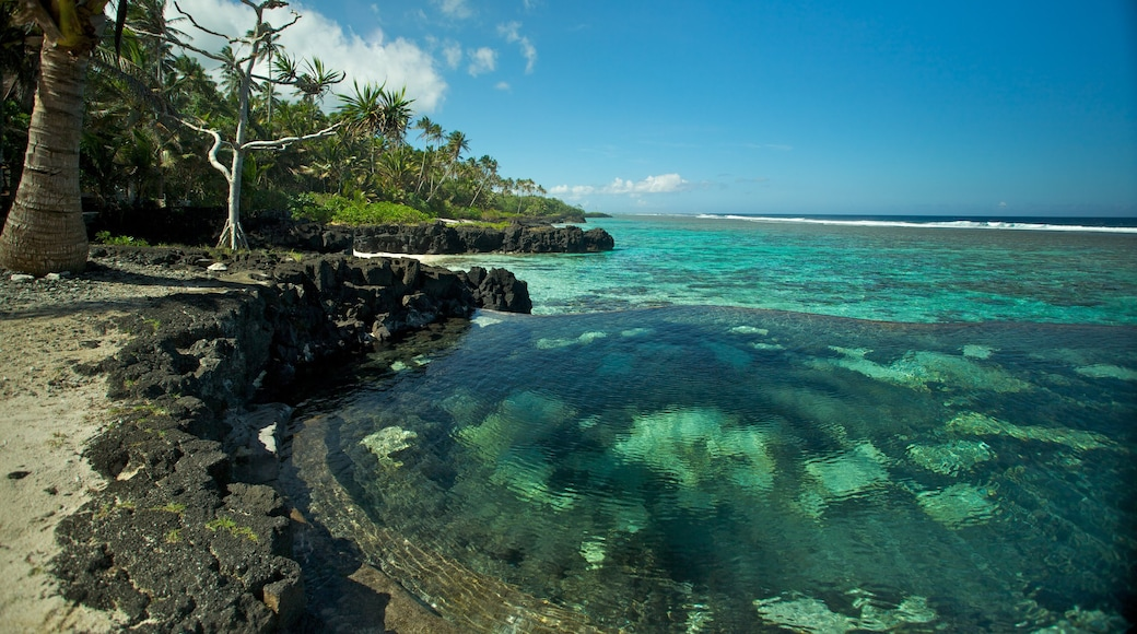 Upolu which includes colourful reefs, tropical scenes and rocky coastline