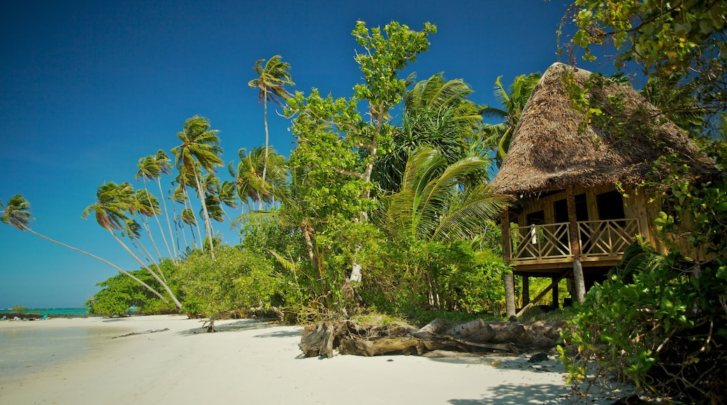Upolu featuring a sandy beach and tropical scenes