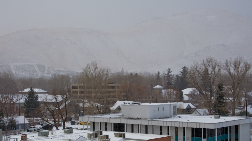 Carson City showing a small town or village and snow