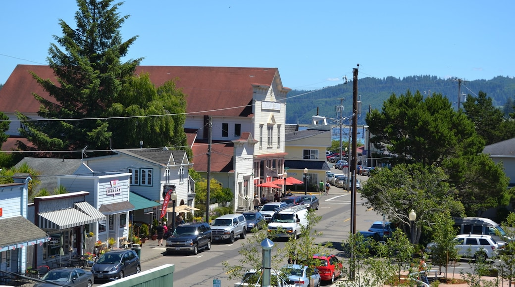 Eugene showing a small town or village, street scenes and heritage elements