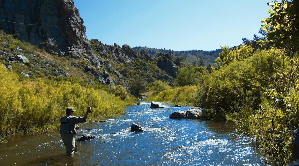 Fort Collins que incluye un río o arroyo, escenas tranquilas y pesca
