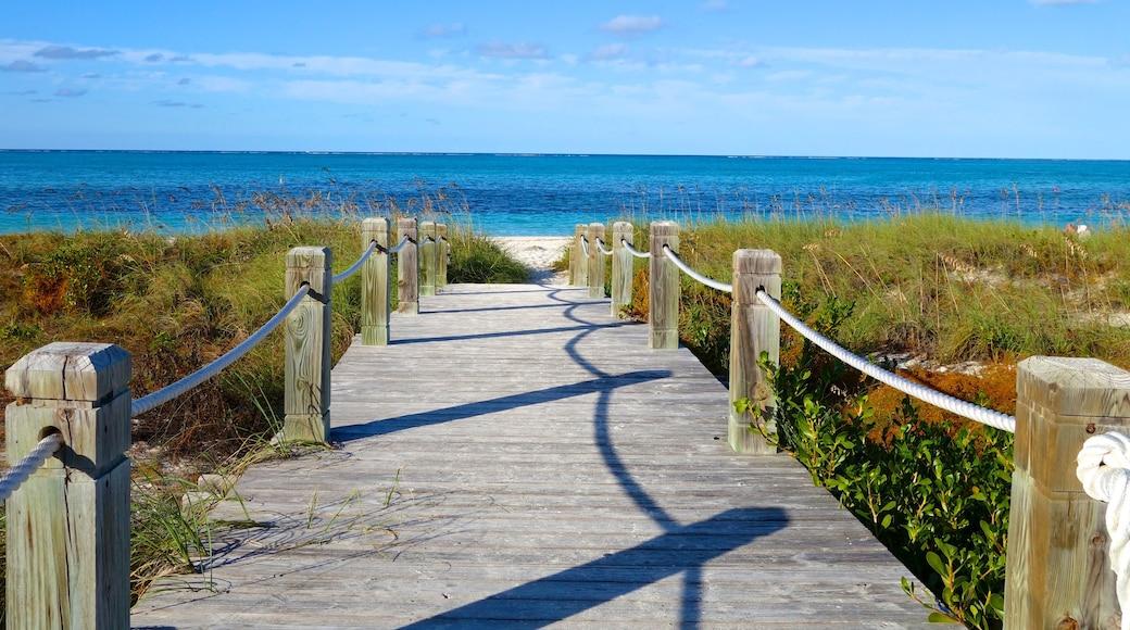 Grace Bay som visar en bro och en sandstrand