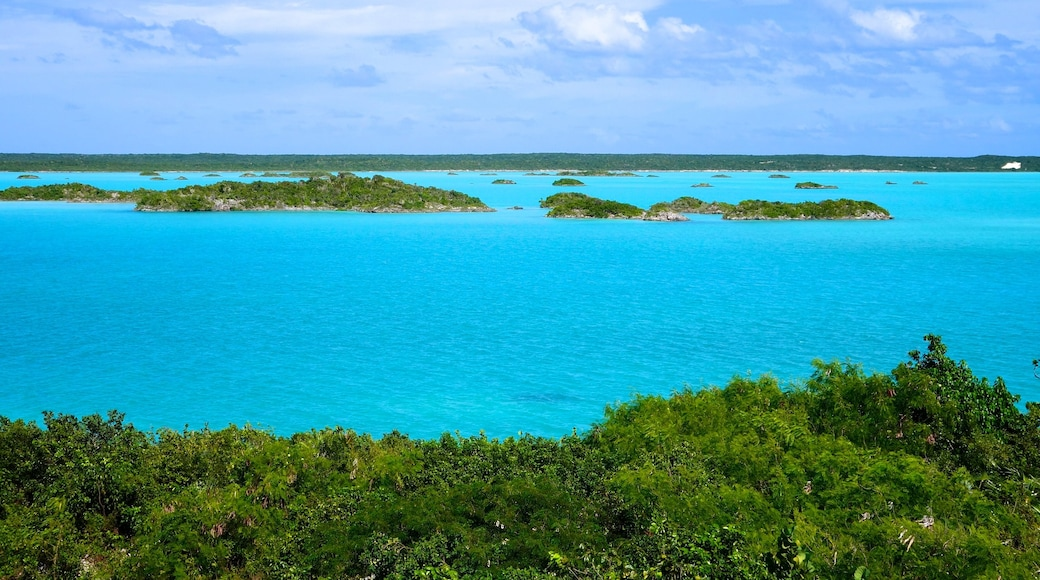 Providenciales which includes general coastal views, island views and landscape views