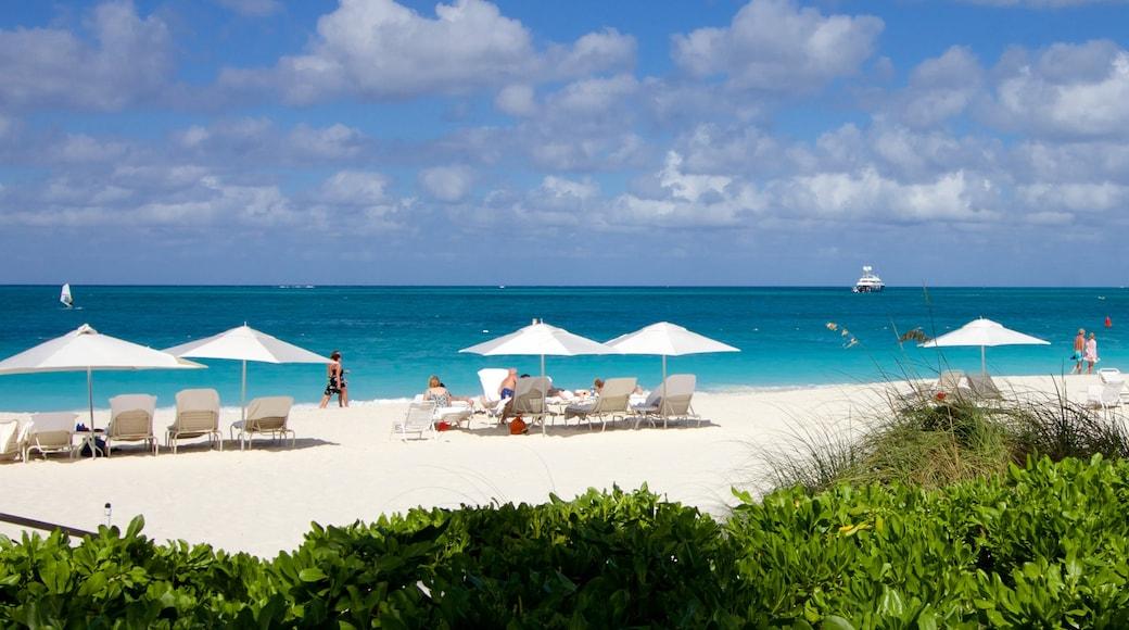 Grace Bay presenterar tropisk natur och en strand