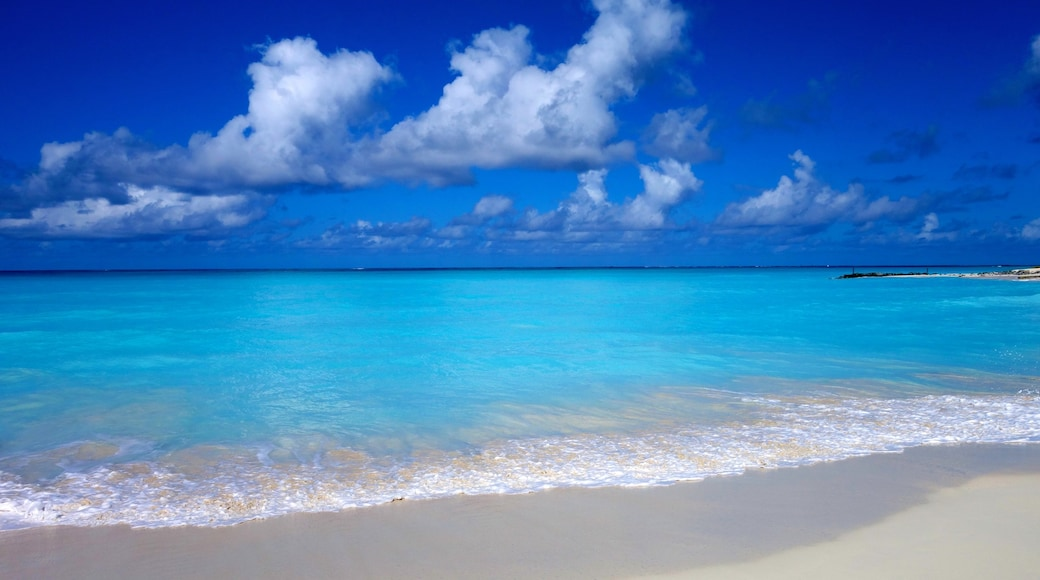 Turks and Caicos featuring landscape views and a beach
