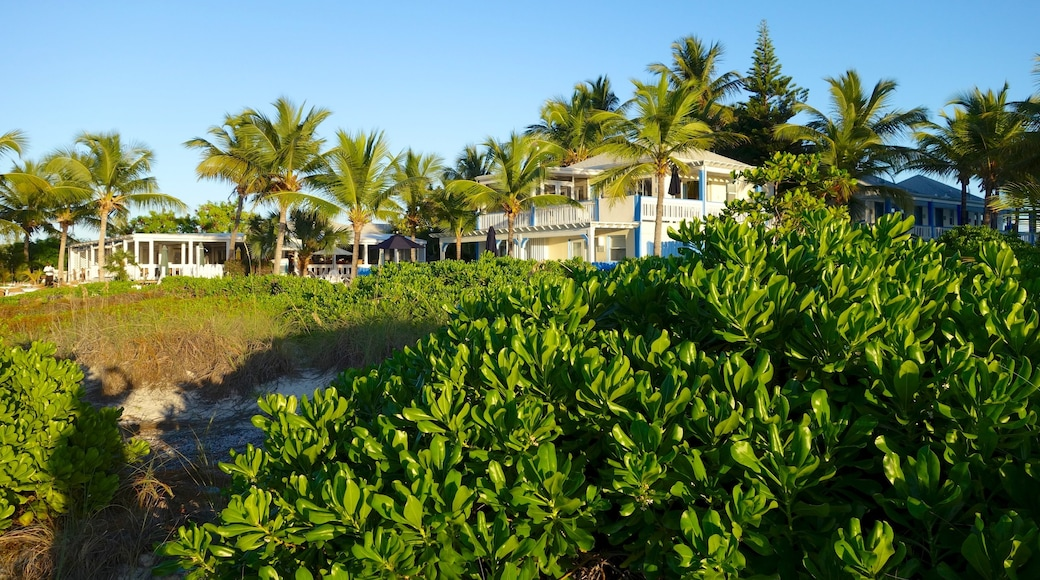 Turks and Caicos featuring a coastal town, a house and general coastal views