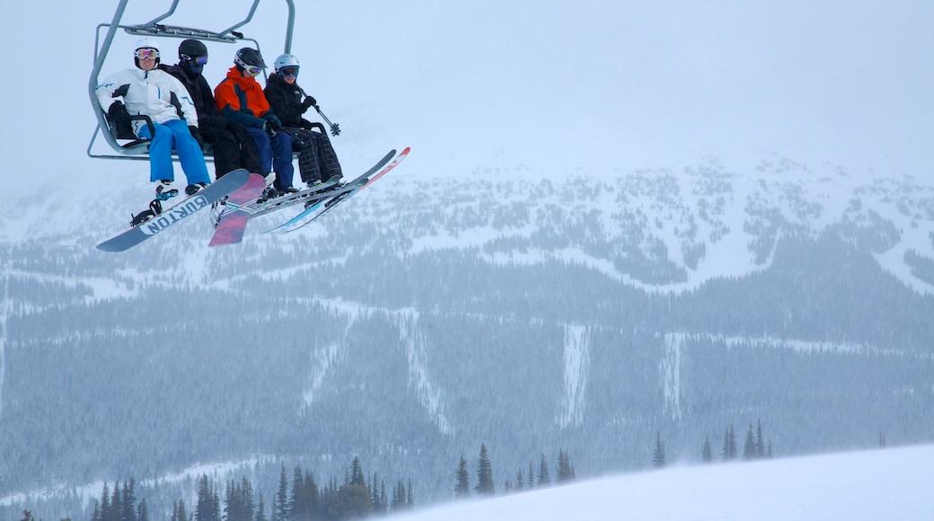 Whistler Ski Area featuring mountains, snow and a gondola