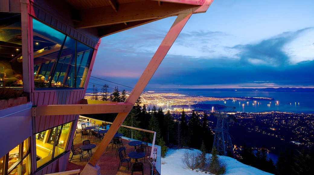 Grouse Mountain which includes views, night scenes and a city