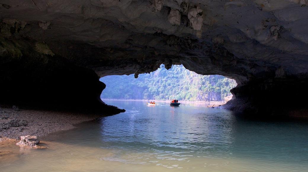 越南 呈现出 洞穴, 海灣或海港 和 綜覽海岸風景