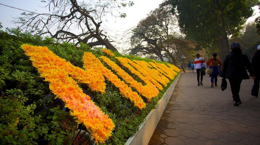 Lago di Hoan Kiem che include fiori