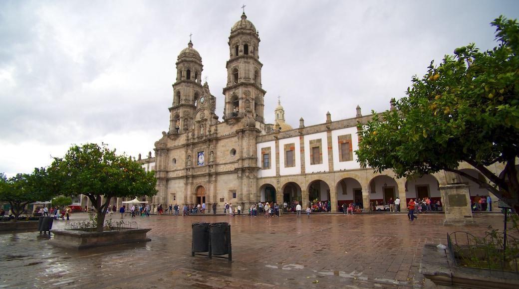 Basílica de Zapopan mostrando un parque o plaza, patrimonio de arquitectura y una iglesia o catedral