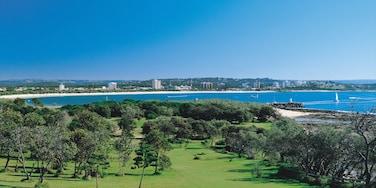 Alexandra Headland showing landscape views, a coastal town and general coastal views