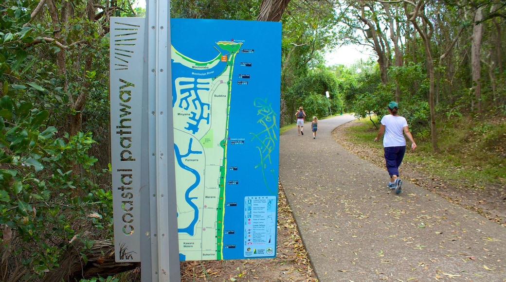 Mooloolaba showing a garden, signage and hiking or walking