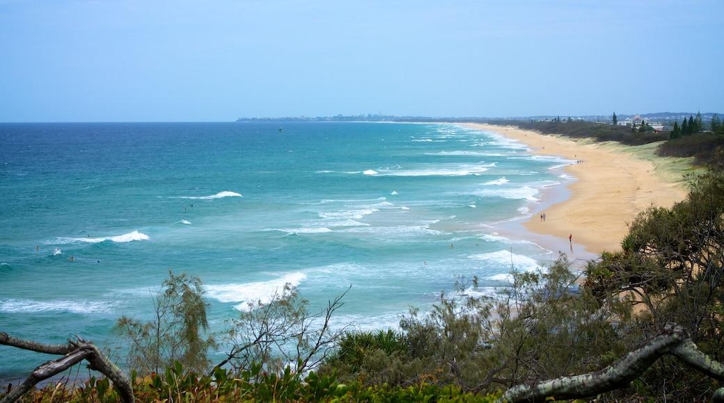 Kawana Beach showing landscape views and a beach