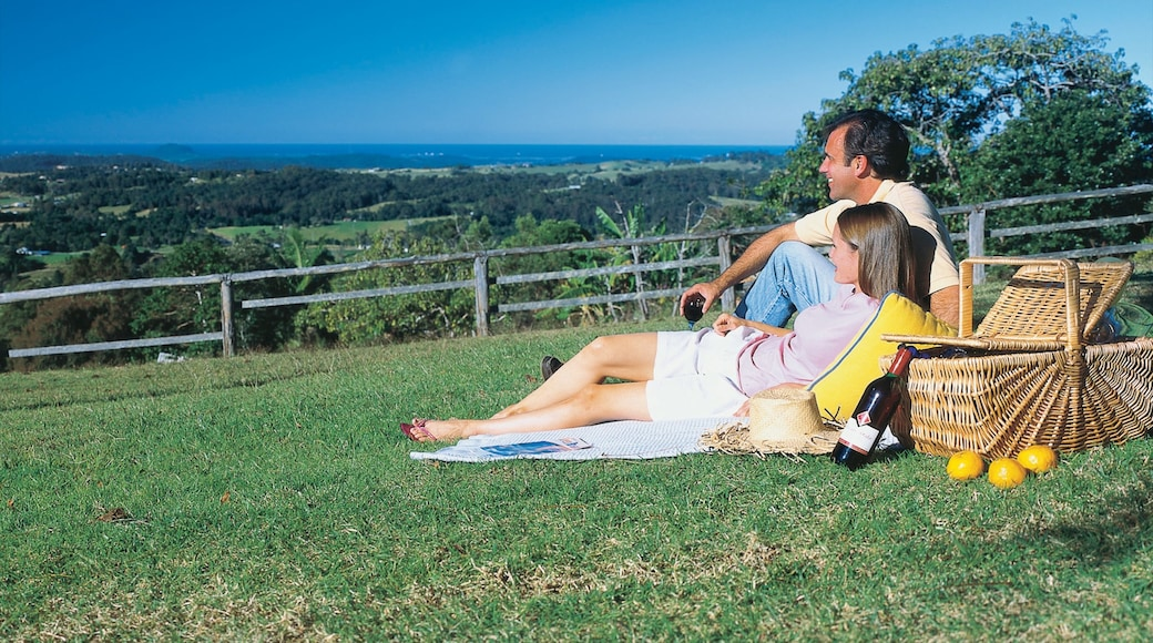 Mapleton featuring picnicking and tranquil scenes as well as a couple
