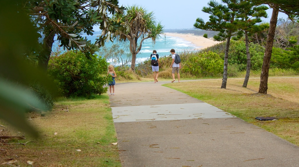 Kawana Beach showing a garden and general coastal views as well as children