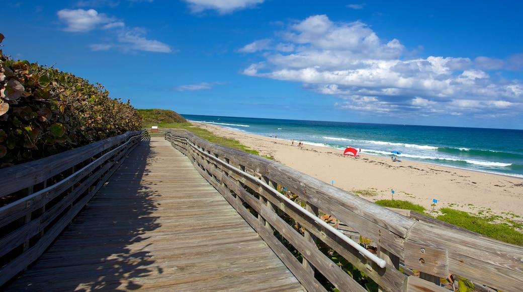 Parco Nazionale John D. MacArthur caratteristiche di spiaggia