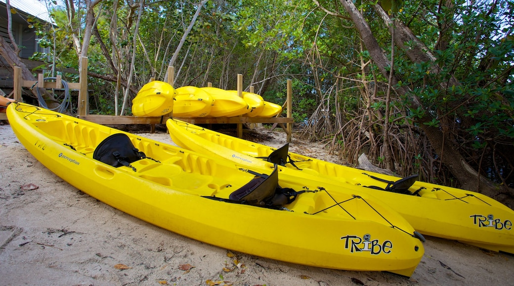 John D. MacArthur Beach State Park which includes kayaking or canoeing and general coastal views