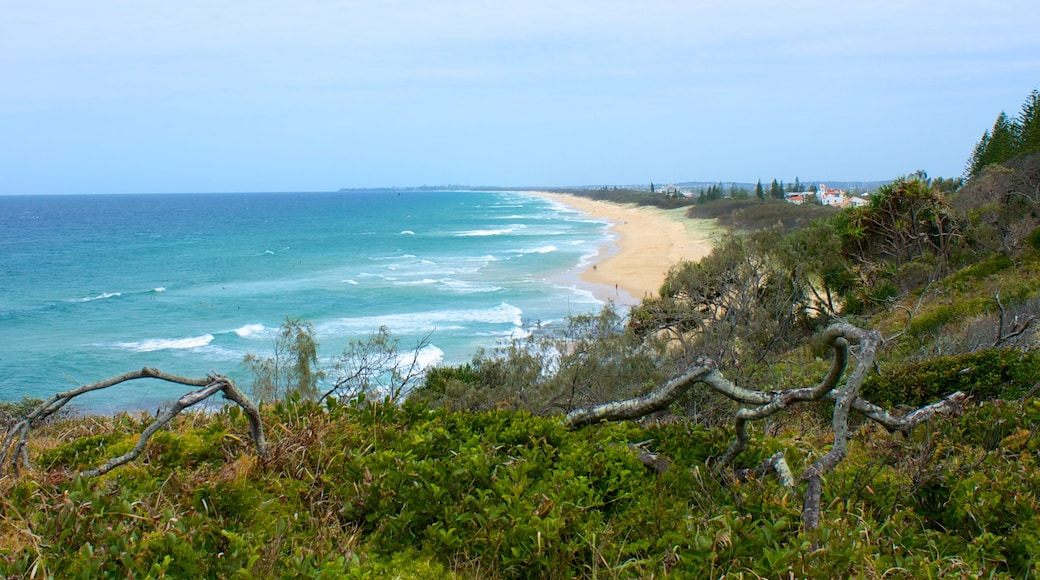 Mooloolaba showing landscape views and a sandy beach