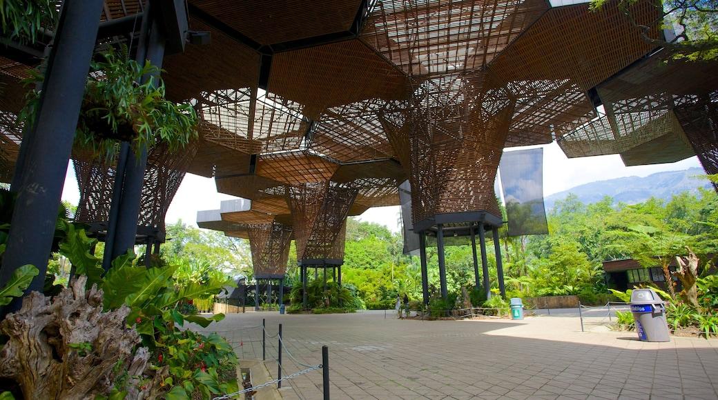 Joaquin Antonio Uribe Botanical Garden mostrando arquitetura moderna e um parque