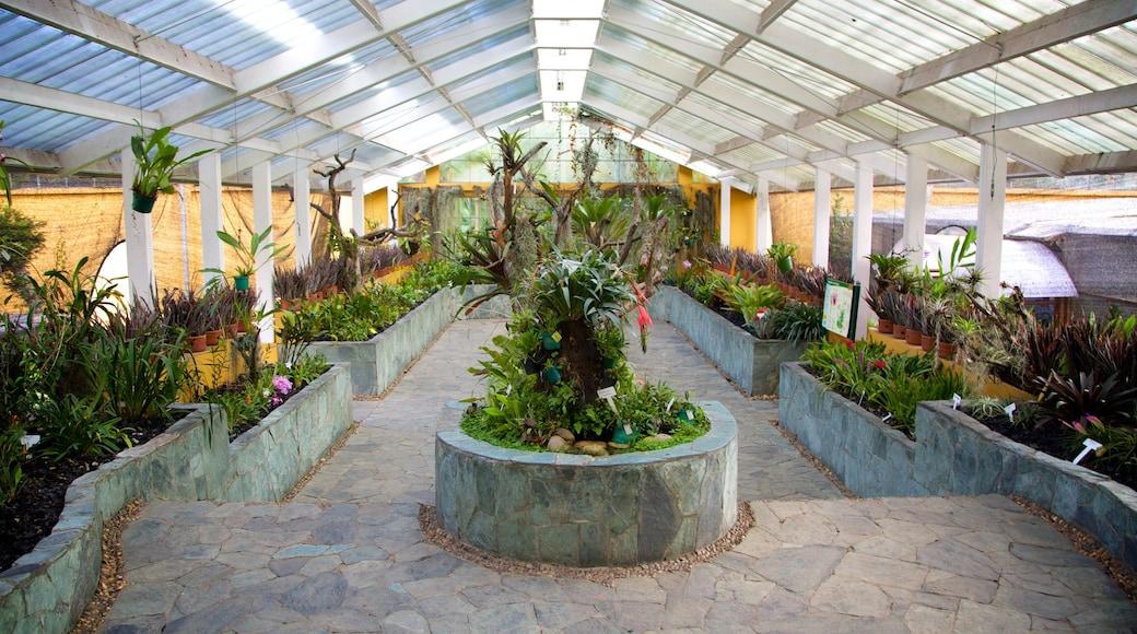 Bogota Botanical Garden showing a garden and interior views