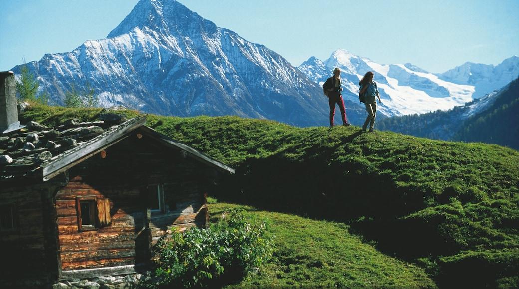 Mayrhofen das einen Wandern oder Spazieren, Berge und ruhige Szenerie