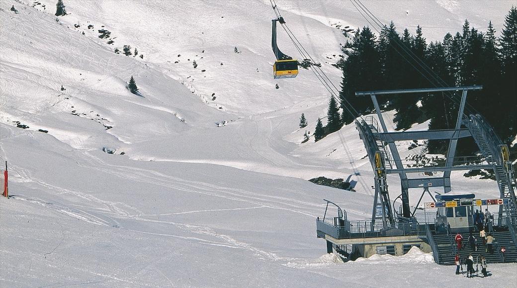 Mayrhofen welches beinhaltet Schnee und Gondel
